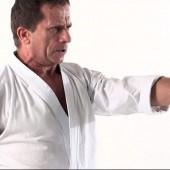 L'Efficacia dell'Arte – Il Karate dialoga con la Musica e la Calligrafia